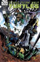 Teenage Mutant Ninja Turtles #17 - Cover A